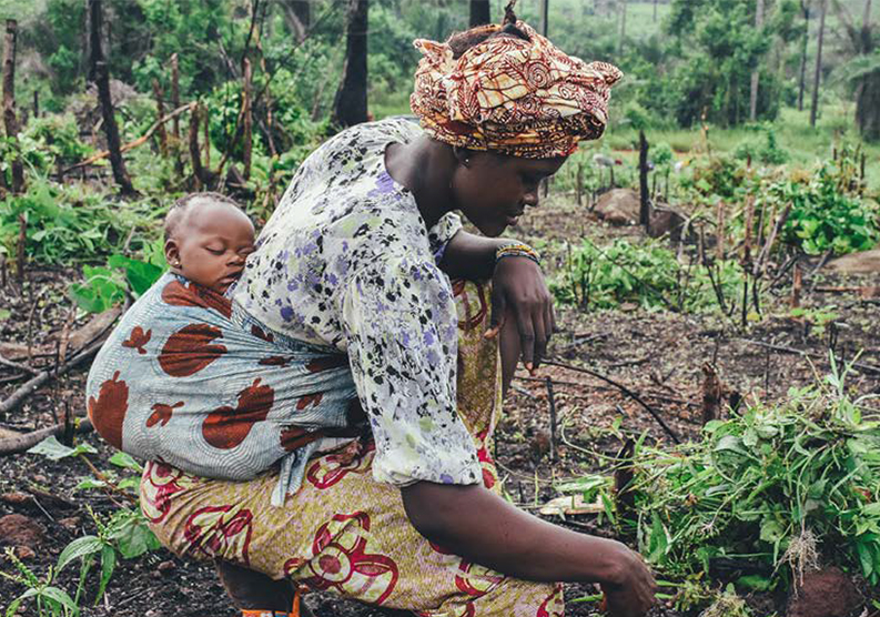 The Untapped Market for Agricultural Innovations in Emerging Economies